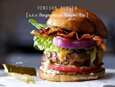 deer burger cookbook 150 recipes for ground venison in soups stews casseroles chilies and sausage books best 10 deer burger recipes ideas on ground