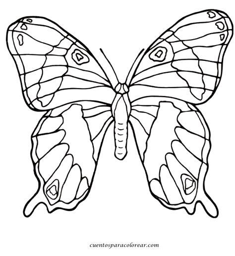 imagenes reales para colorear dibujos para colorear mariposas