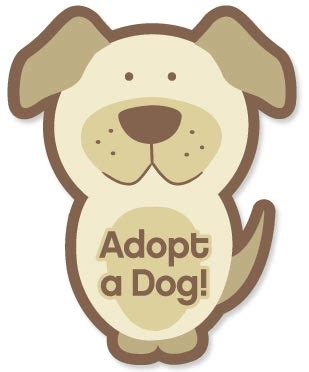 where to adopt a puppy ash animal rescue