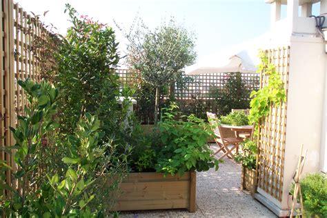 Arbuste En Pot Pour Terrasse Plein Soleil by Quel Arbuste Pour Ma Terrasse