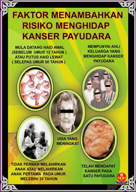 Minyak Zaitun Pembesar Payudara house of aafiyat lifestyle minyak zaitun kanser payudara