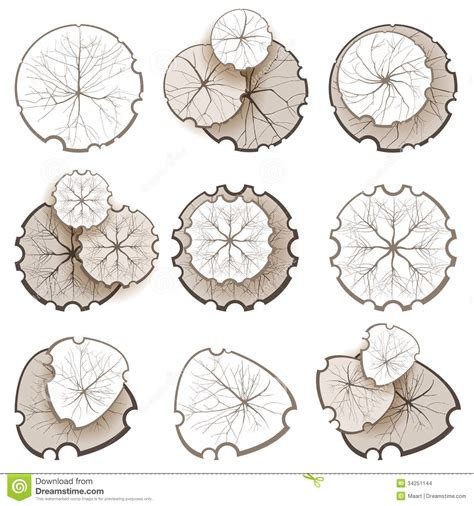 top 28 web based landscape design web based home trees top view stock images image 34251144