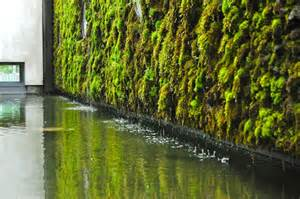 Vertical Garden Toronto Moss Wall On Moss Wall Plant Wall And Plants
