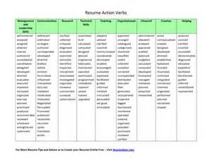 resume words adjectives bestsellerbookdb