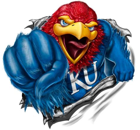 jayhawk shirt design by artofpister deviantart on