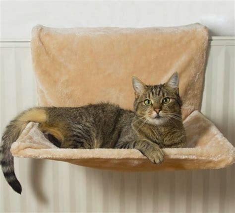 amaca per gatti amaca per gatti tipologie e consigli miciogatto it
