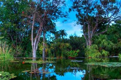 hotel jardin botanico puerto de la cruz jard 237 n bot 225 nico de puerto de la cruz
