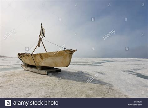 boat made of skins barrow alaska stock photos barrow alaska stock images
