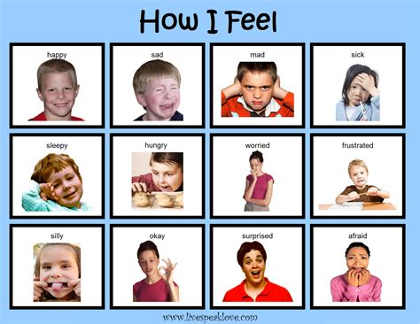 if feelings take books visual supports for behavior live speak llc
