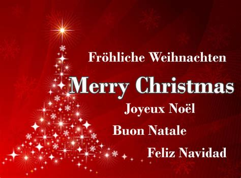 company christmas greeting business christmas greeting funny pictures