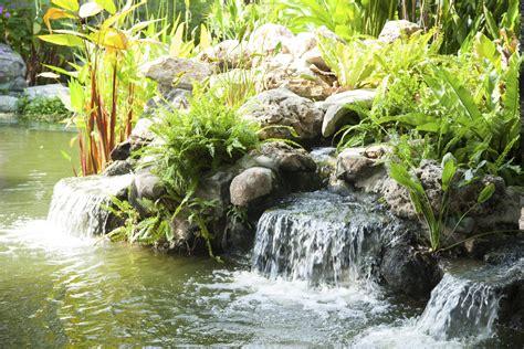Decoration De Bassin Exterieur d 233 co bassin ext 233 rieur crit 232 res de choix ooreka