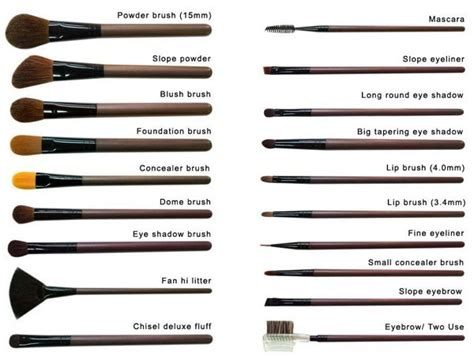 Hair Style Tools Names by Different Types Of Makeup Brushes And Their Uses Makeup