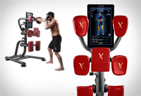 pro home boxing system nexersys
