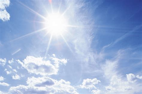 Sun Lights by Australian Trolls With The Best Of Them Binary