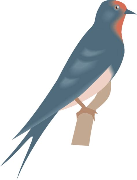 swallow clipart free download clip clipart cliparts co