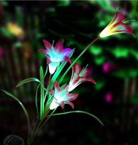 Color Changing Led Lights Pictures Ideas All About House Color Changing Led Landscape Lighting