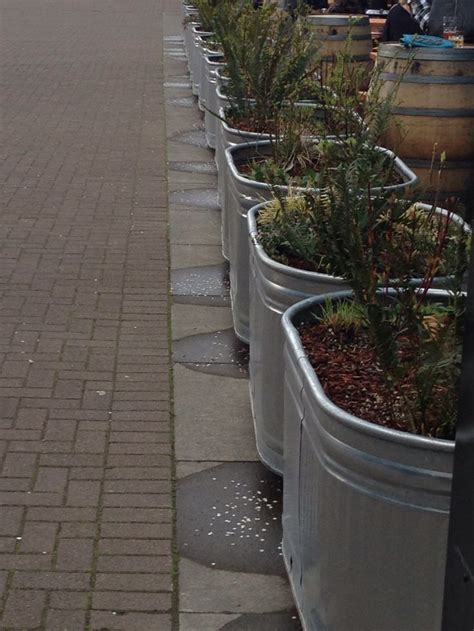 Galvanized Stock Tank Planter by Galvanized Tubs Livestock Water Troughs As Raised Beds