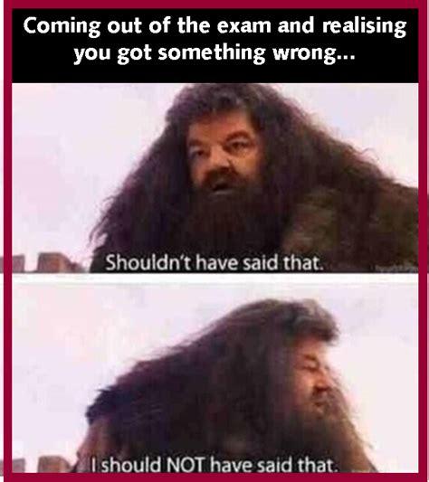 Hagrid Meme - memes the storm project