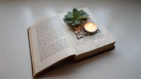 How To Make A Book Planter by How To Make A Vintage Book Planter