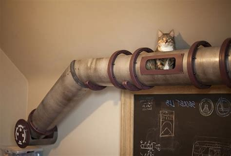 modern cat furniture design ideas wall mounted and heated modern wall mounted house for cats by mojorno decor advisor