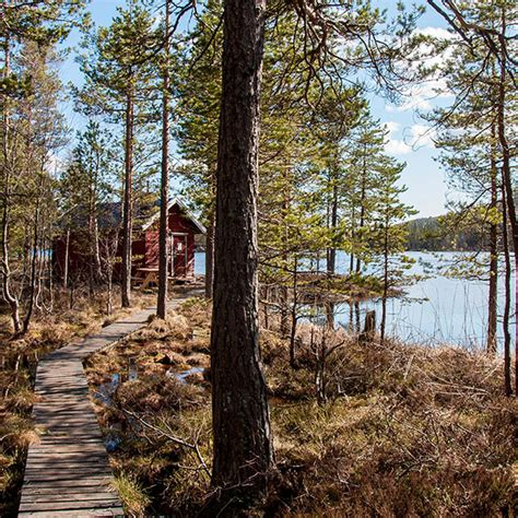 skuleskogen national park happy spooner