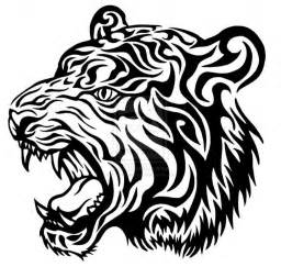 tiger face line drawing drawing art gallery