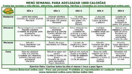dietas para adelgazar dietas suaves y dietas saludables dietas equilibradas