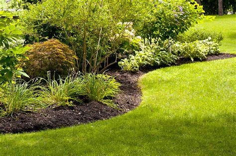 Better Lawns And Gardens by Betterlawns Landscaping Image Better Lawns And Gardens