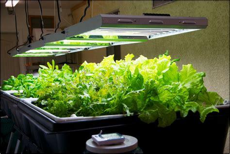 indoor vegetable grow system home  garden designs