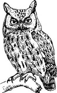 Owl Outlines Drawings by Owl Clip At Clker Vector Clip Royalty Free Domain
