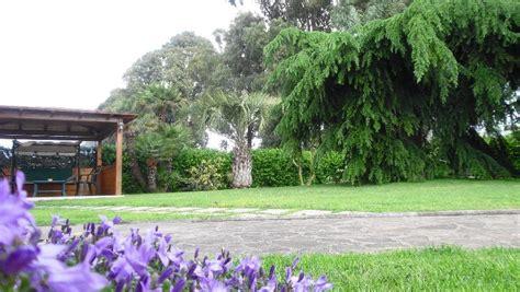 giardino dei semplici b b giardino dei semplici sabaudia