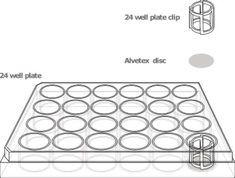 96 Well Plate Format Look Bookeyes Co 24 Well Plate Template Excel