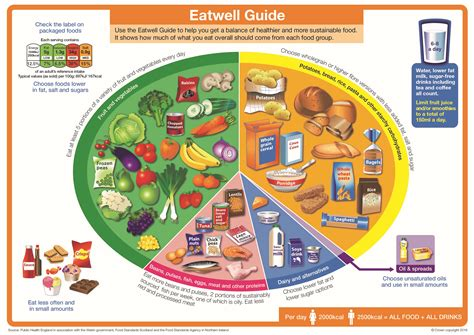 healthy plate diagram healthy and weight tyneside council