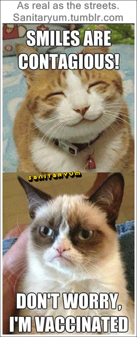 Grumpy Cat Meme Clean - clean funny pics by sanitaryum i m vaccinated grumpy