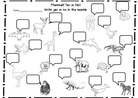 printable animal groups sle s superstars animal classifications unit
