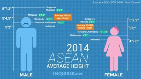 pilipino men celebrity height lenght wiki want to be taller try these exercises now vigorbuddy com