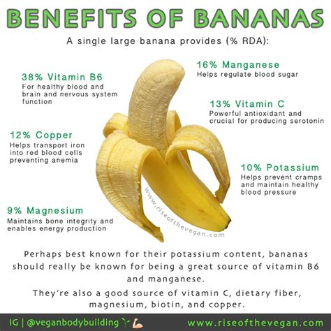 Banana Island Detox Benefits by Benefits Of Bananas