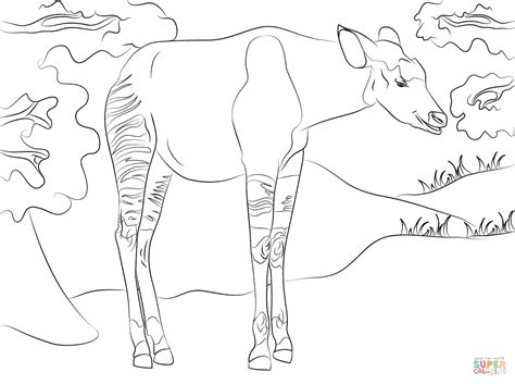 okapi coloring pages www imgkid com the image kid has it