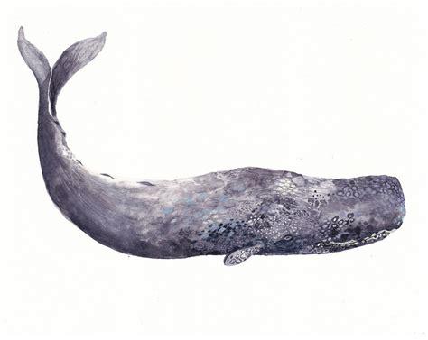 ancient whale archival print