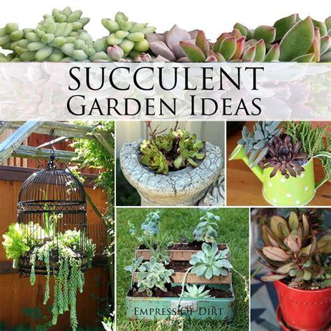 Succulent Garden Ideas Succulent Garden Ideas Ebay Garden Dreams Pinterest