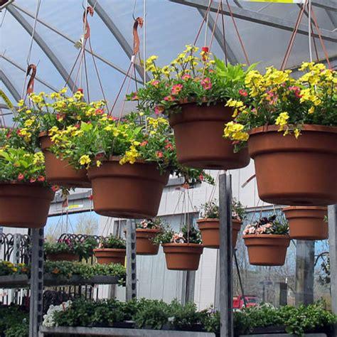 Garden Center Greece Ny Landscaping Rochester Indoors Plants Seasonal Plant