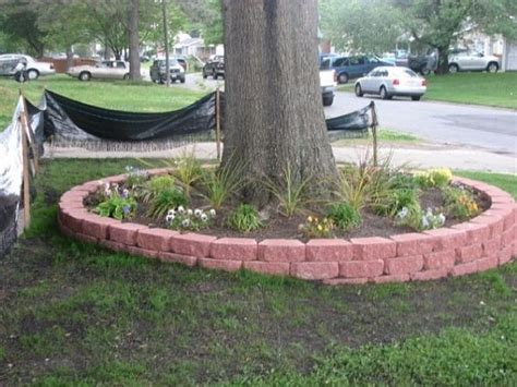 flower beds around trees raised flower beds around trees this is what i am doing