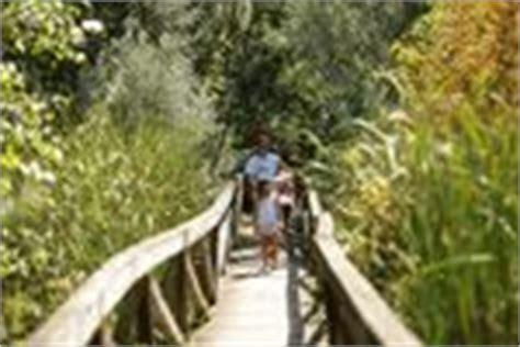 Potato Creek State Park Cabin Rentals by 1000 Images About Potato Creek State Park On