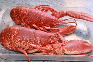 cuire un homard la cuisine de g 233 rald