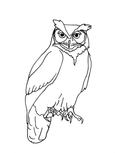 Owl Outlines Drawings by August 2011