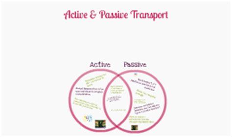 passive and active transport venn diagram copy of venn diagrams by bridget collier on prezi