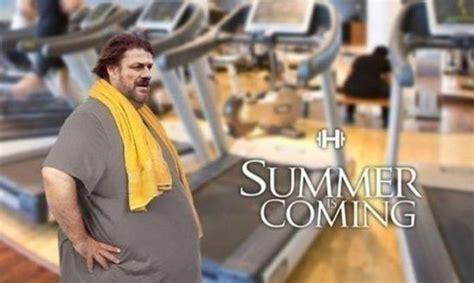 Summer Is Coming Meme - funny summer is coming meme jpg