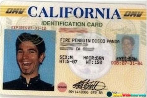 funny fake names 14 fake ids that tried their very best collegehumor post