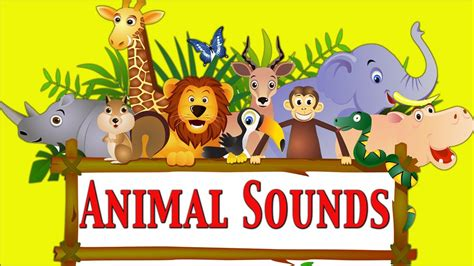 animal sounds animal sounds for part 1 learn school