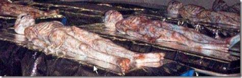imagenes reales area 51 se revelo fotos de los tripulantes del ovni en rossel